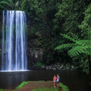 Great Barrier Reef Cruise and Waterfalls