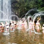 Atherton Tablelands Waterfall Tour